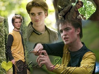 I first saw my handsome Robert in Harry Potter and the Goblet of Fire,as Cedric Diggory<3