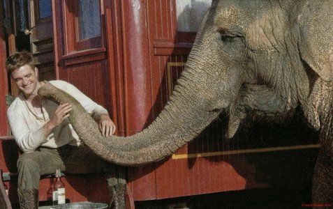 my gorgeous baby with Tai,his elefante co-star from Water for Elephants.Even the 4 legged females find my Robert gorgeous.Talk about animal magnetism<3