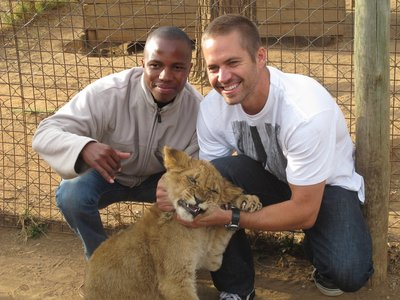 my handsome American hottie Paul Walker with a lion cub<3