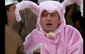 couldn't find a pic of my Aaron in a costume, but here's Matthew Perry in a bunny costume:D