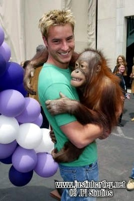 """my sweetie at the """"1000 episodes of Passions"""" party with Bam-Bam the orang-utan <33333"""