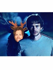 Ok so people call jared a moose all the time .. its like his nickname , anyway Will aka Hugh .. keeps having nightmares about stags .. cuz this Killer .. killed people & stuck there bodys on stags ... ok so its pretty black to laugh about , but someone made this pic on tumblr & i thought it was pretty funny