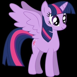 name Twilight Sparkle What kind of pony? Alicorn What would your cutie mark be? magic What color would your mane be? purple What would Du work at? nowhere