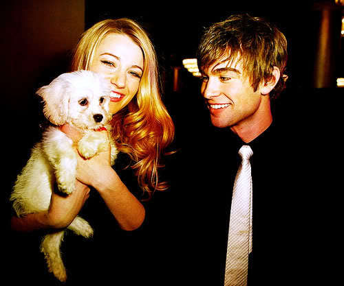 Chace Crawford and dog.