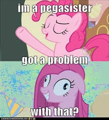 I think their very unique. Which is great. I'm a pegasister and PROUD. /) *brohoof*