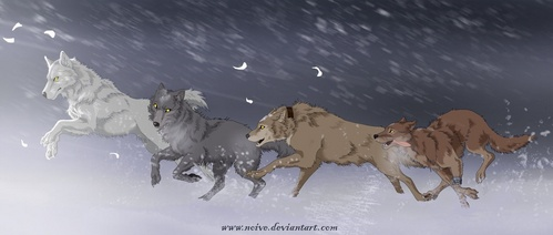 I've only see bout 20 animes but the saddest one I have seen so far is Wolfs Rain TT^TT SO SADDDD...