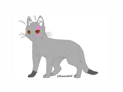I am wolfmist warrior of nightclan I am a she cat,when I was a kit,Stripeface the medicine cat found me in the forest alone and took me início with him.I don't have any siblings in my clan exept my old início in the village, their names are Dotty and frog.My parents were belle and rebel .I am I 18 Moons old.My kittypet name was Amber but I'm proud to say I have a warrior name. Of course I've broken the warrior code before I'm sure I don't know a cat who hasn't, when I was going to meet my love, greyfur of sunclan I was expecting to see his blue eyes, unfortunaly I found green eyes, it was Mapplestar, leader of sunclan she gave me this scar on my face and my heart, she had killed greyfur as punishment. but thankfully starclan gave us another chance por sending greyfur into a kit, Talonkit later Talonfur, in honor of his former self now we are happy with three kits, desertkit, greykit, and pinekit. I know how mischievous I am and sneaky but I will risk my life for my foster parents, whitenose and briarheart, my new family, and most of all, the clan I like to call............Home
