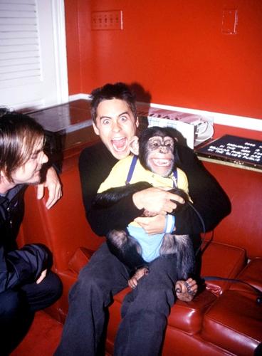 two monkeys XD