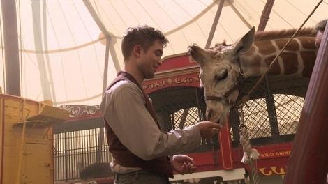 my baby feeding a giraffe,from a scene from Water for Elephants<3