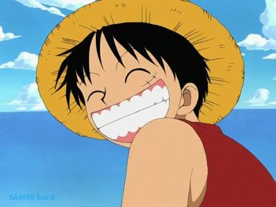Monkey.D.Luffy (One Piece)