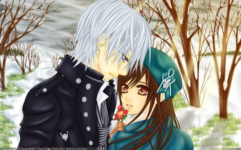 Zero and Yuuki from Vampire Knight