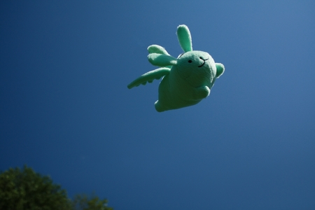 Some time ago, my broder made the mistake of buying me a flying mint bunny plush. Since that day, my life has never been the same.
