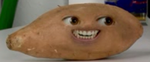 I am a batata, yam and that's all what I am.