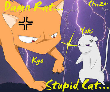 Kyo and Yuki Sohma fighting against each other Fruits Basket