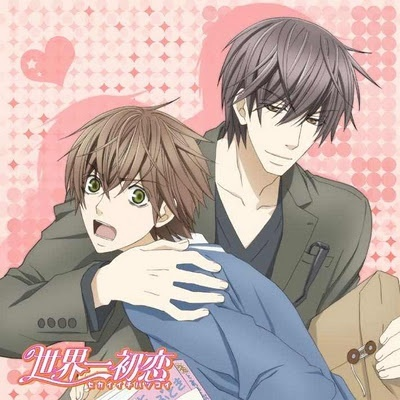 I would say Sekai Ichi Hatsukoi can be classified più as a shounen-ai, at least concerning the anime. Either way, I would say it's my favorite. ^ ^
