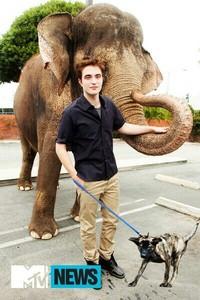 Robert Pattinson with his dog Bear, and an elephant! ;-)
