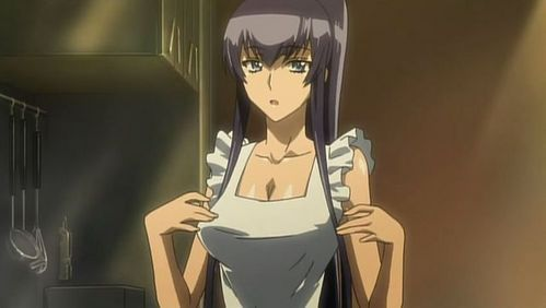 Saeko Busujima (Highschool of the Dead)