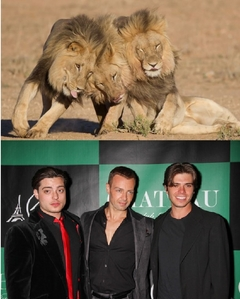 Matthew and his brothers (as lions, too) 哈哈