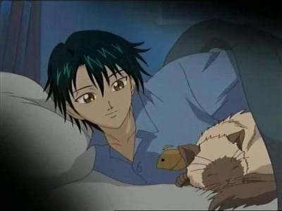 Ryoma and his pet Himalayan cat Karupin from Prince of Tennis...