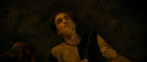 Robert as Cedric in HP/GOF:(