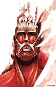 Mr.Colossal Titan.
