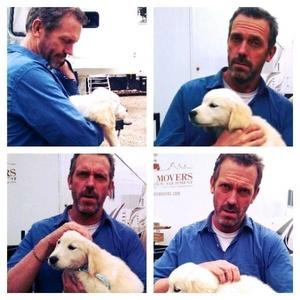 Hugh Laurie holding a cún yêu, con chó con <3