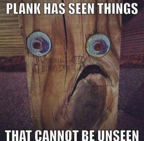 Plank sees everything...