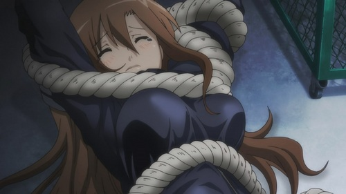 Aria Shichijo from Seitokai Yakuindomo