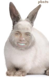 My Bunny Baby <333333333333