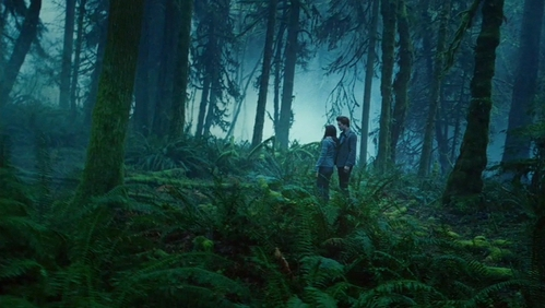 Edward and Bella in Twilight surrounded kwa trees<3