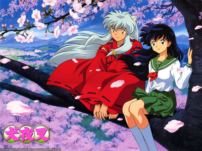 Inuyasha from ur taste .i think u have to watch Inuyasha * Inuyasha final act........u will Cinta both of them........its an Anime with both romance & action......he he he he