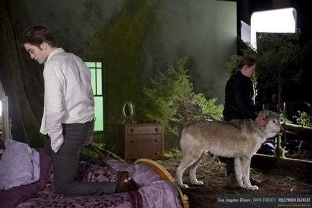 Robert kneeling on a letto in a deleted scene from New Moon<3