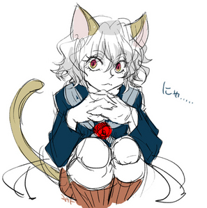 Neferpitou has cat ears and a tail :3