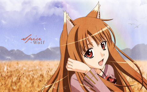 Holo from Spice and wolf ^^