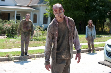 Walkers attack anything that are alive.