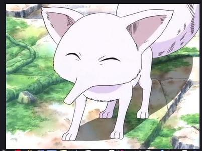 구름, 클라우드 여우 - Suu (One Piece)