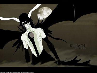 Ulquiorra Ciffer (Bleach) Ulquiorra in his true form................heh ehe ehe