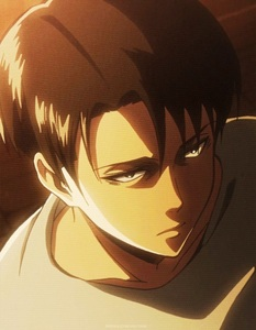 "Levi Heichou ""Rivaille"" (Attack On Titan) Not sure if he counts but in my opinion he is emotionless >.>"