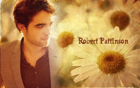 Robert Pattinson<3<3<3 He can't be summed up in just 1 sentence<3