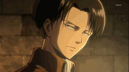 Mine happens to be Levi :3 Levi is just an amazing character and his personality might not be to great but deep down he cares about his comrades. Also if the titans ever came to this world I'd rather have Levi on my side rather than Eren. (I still upendo Eren though ^^;) So in all Levi is the best character in my opinion and I upendo him to bits and pieces. (And of course wewe cant say no to that cute little face of his. :D)