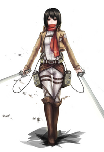 Mikasa Ackerman From: Attack on Titian