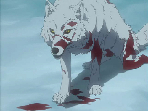 Kiba from Wolf's Rain along with the rest of the main cast ...