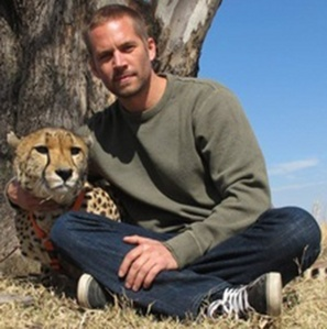 Paul Walker with one of my fave animals,the cheetah<3