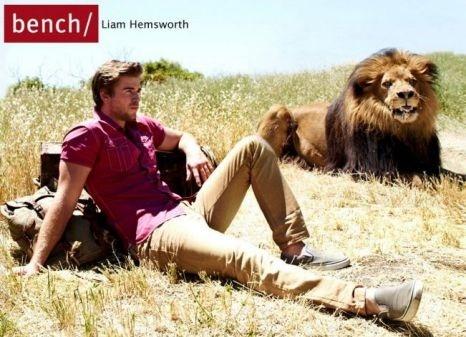 Liam + lion