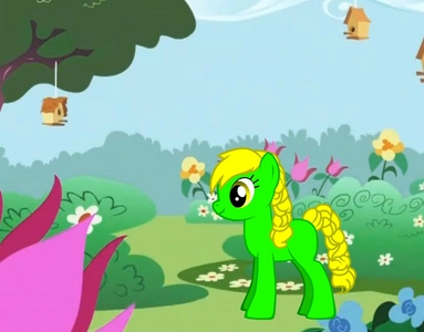 earth pony, green with yellow braided mane, cutie mark traube with Musik note(its not in the pic shhhhhhhh) name traube note, occupation playing all sorts of instruments and working on the traube farm, best freinds:flameshad, midnight glitz, applejack, pinkie pie, derpy, and fluttershy.