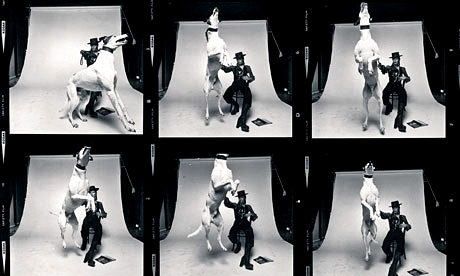 that photoshoot with a giant, crazy dog and Bowie staying super cool, while the photographer is scared to death