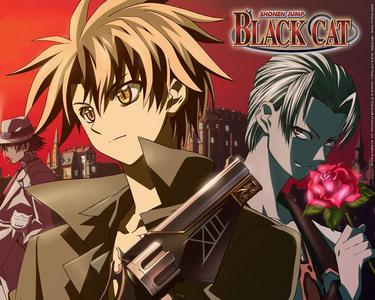 To Tell You The Truth, I Didn't Think I'd Like Black Cat, But It Turned Out To Be One Of The Best Anime I'd Ever Watched :)