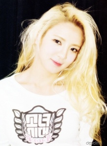 My favourite is hyoyeon ..she is my number one ... I also like other member but they are after hyoyeon ... Hyoyeon is sexy, beautiful and talented.