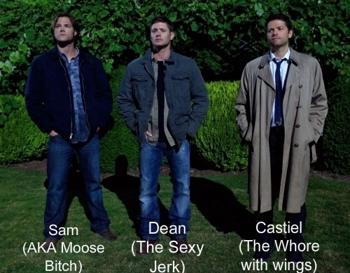 Team free will :) I will have the sexy jerk ;)