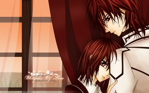 kaname and yuki from vampire knight its weird to ship a bro and sis! -_-